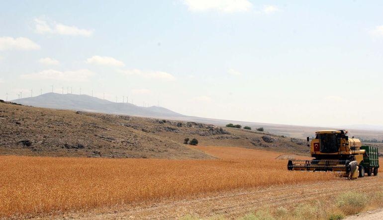 Tarımda arazileri tehlikede