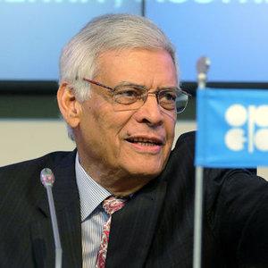 OPEC: PETROL DENGEYE OTURACAK