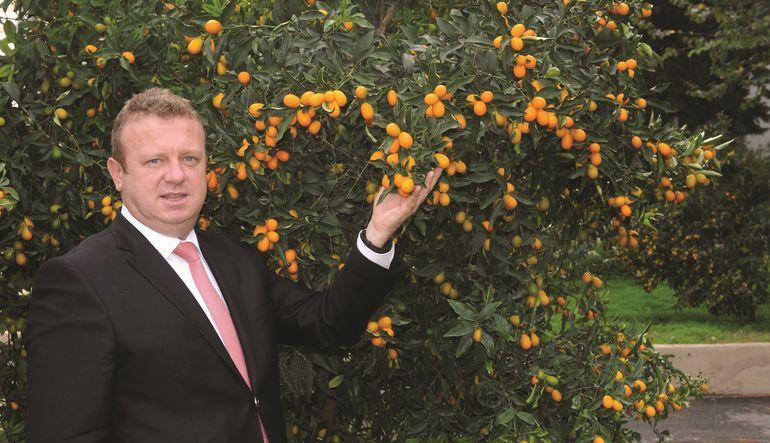 'Altın portakal'ın kilosu 30 TL