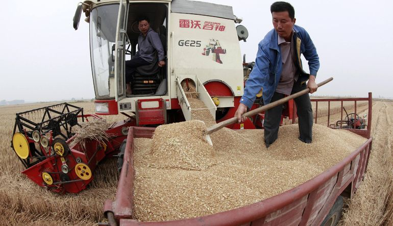 Analiz: Tarımda Çin etkisi (2)