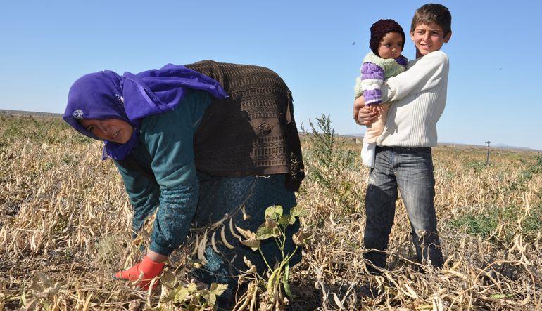 Tarım işçileri çözüm bekliyor
