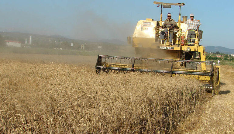 Tarım ÜFE %2,48 arttı