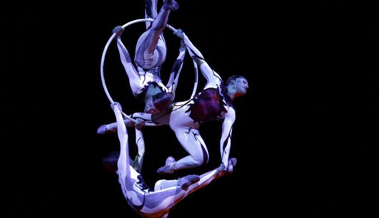 Cirque du Soleil hisseleri satılıyor