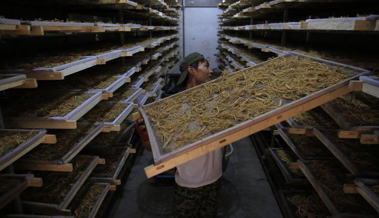 Çin'in Nisan ayı imalat sanayi göstergesi ekonomiyi canlandırma çabalarına rağmen zayıfladı