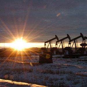 OPEC: PETROLDEKİ DÜŞÜŞ SPEKÜLATİF