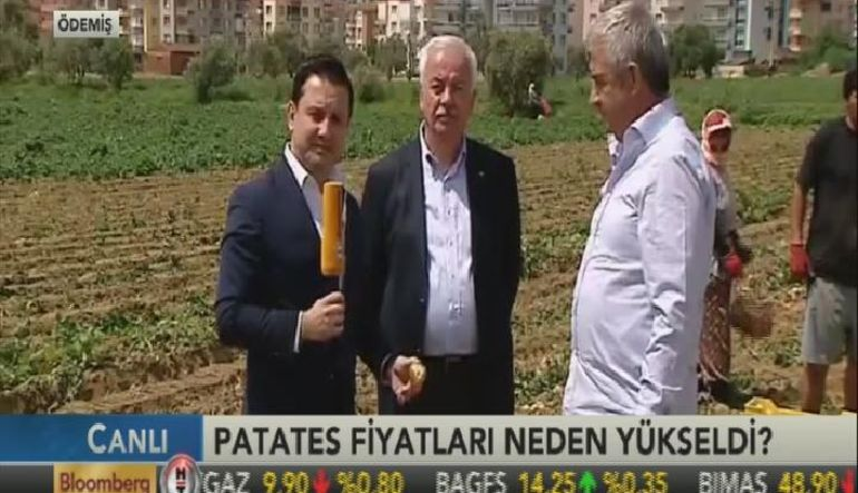 Patates tarlada 1,80 TL