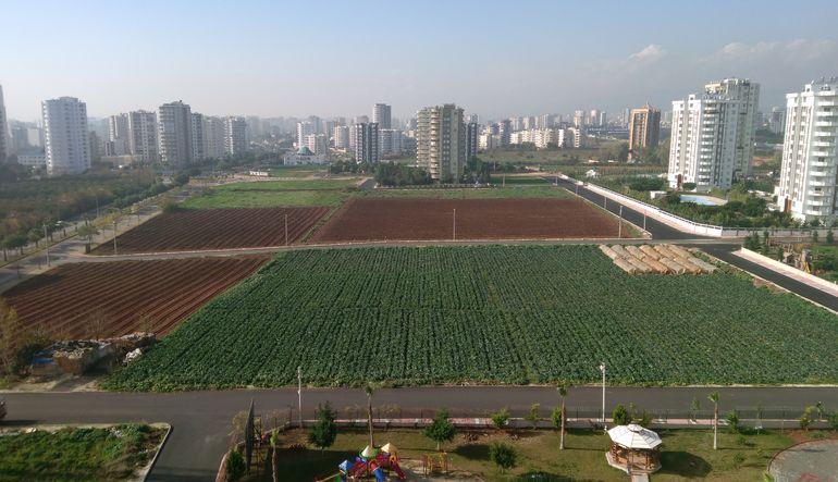 Tarım arazileri hızla daralıyor