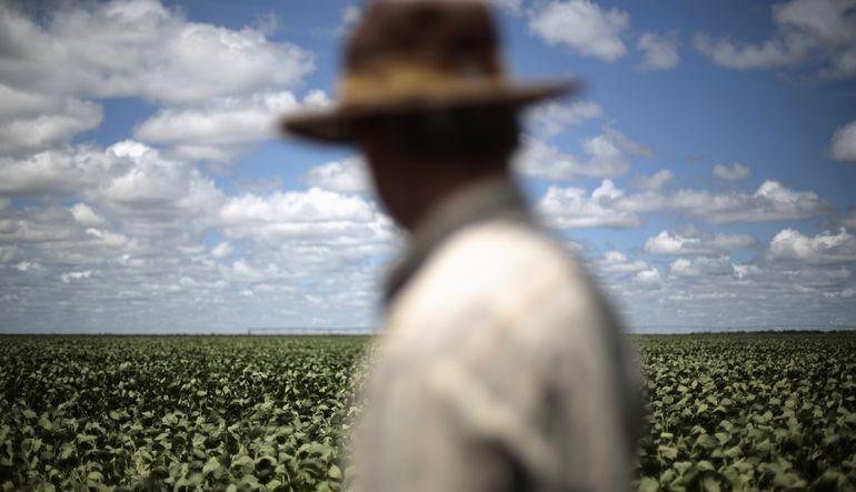Gıdada global düşüş sürüyor