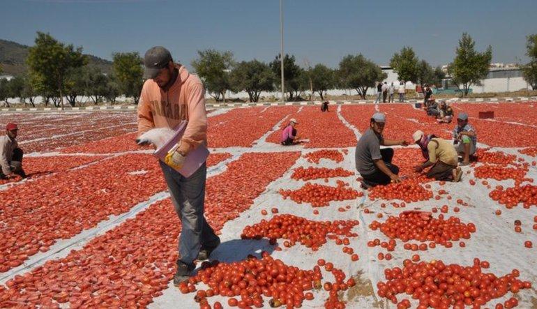 Enflasyonda yeni risk: Suriyelilere çalışma izni