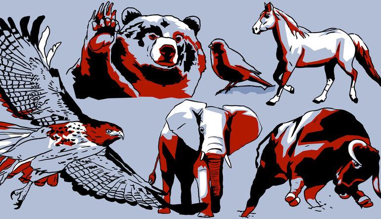 Finans dünyasının hayvanat bahçesi