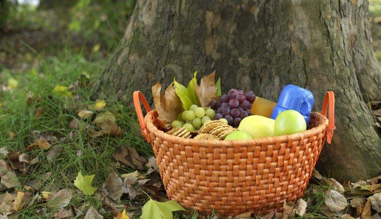 Diğer ülkelerde gıdanın enflasyon sepetindeki payı ne kadar?