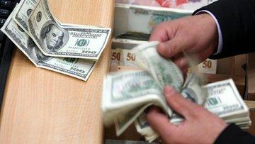 Lütfi Elvan'dan dolar açıklaması