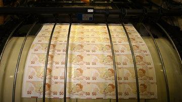 Ekonomi otoritelerinden dolar ve Merkez Bankası yorumu