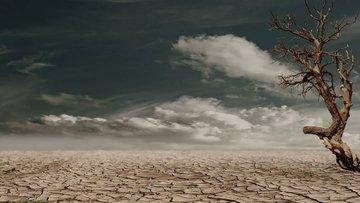 Korkutan uyarı: '6 ay içinde dört kıtlık 20 milyonu öldürebilir'