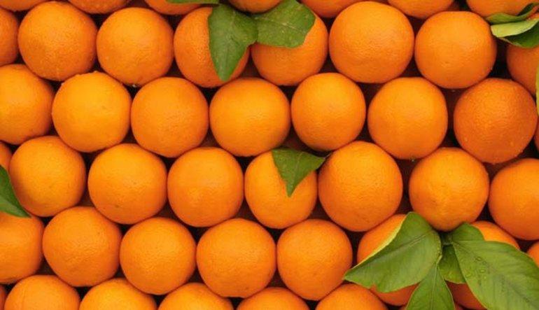 Rusya'dan portakala gümrük vergisi hazırlığı