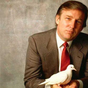 Büyük güvercinden Trump'ı kızdıracak açıklamalar