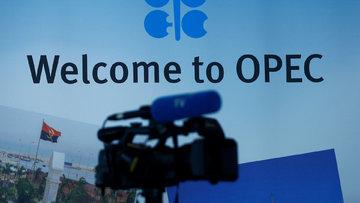 Delege: OPEC kesintiye 9 ay daha devam edecek