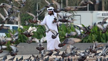 5 başlıkta Katar krizi hakkında bilinmesi gereken her şey