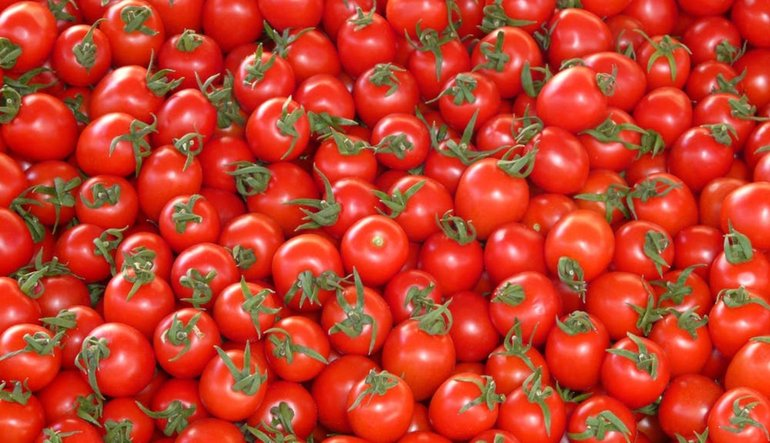 Suriye'ye domates ihracatı yüzde 4500 arttı