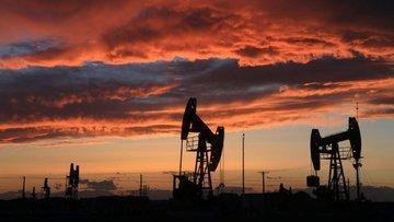 OPEC'in arzında yılın rekoru