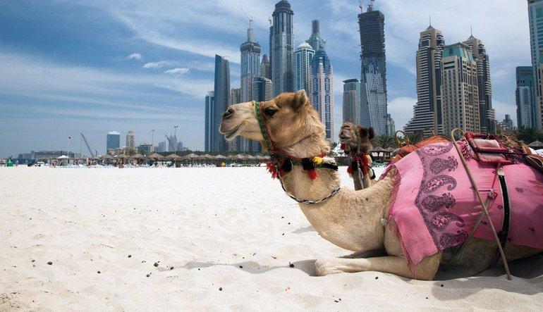 'Katar krizinin arkasındaki ülke'