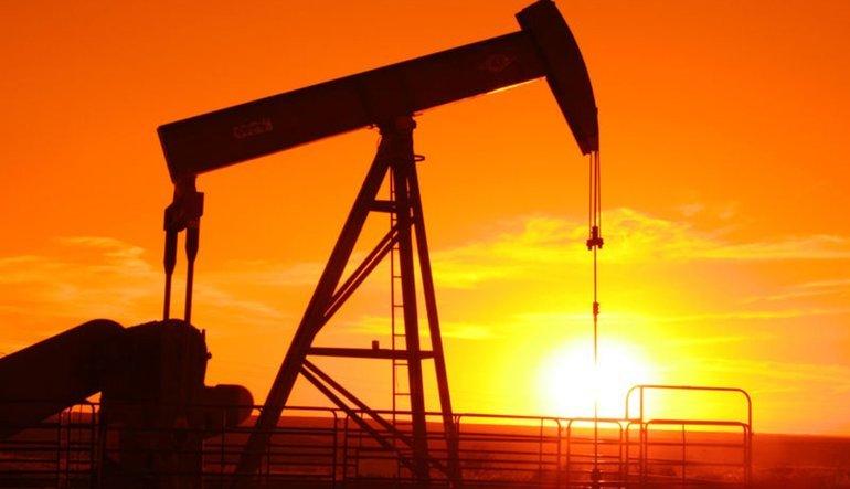 Mısır'dan uluslararası petrol arama ihalesi