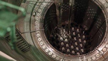 Akkuyu Nükleer Santrali'ni kuracak şirket hisse satacak