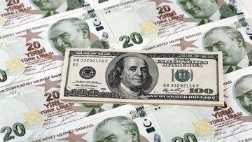 Yerlilerden 2 milyar dolarlık döviz satışı