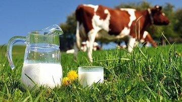 Sütümüz azaldı