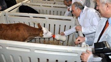 Çiftlik Bank'ın Tarım Bakanlığı ile ilgisi var mı?