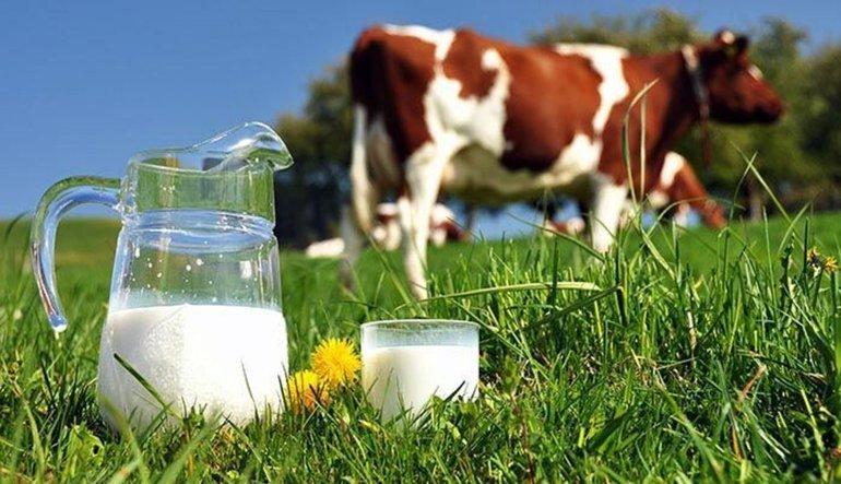 Süt üreticilerinin fiyat isyanı